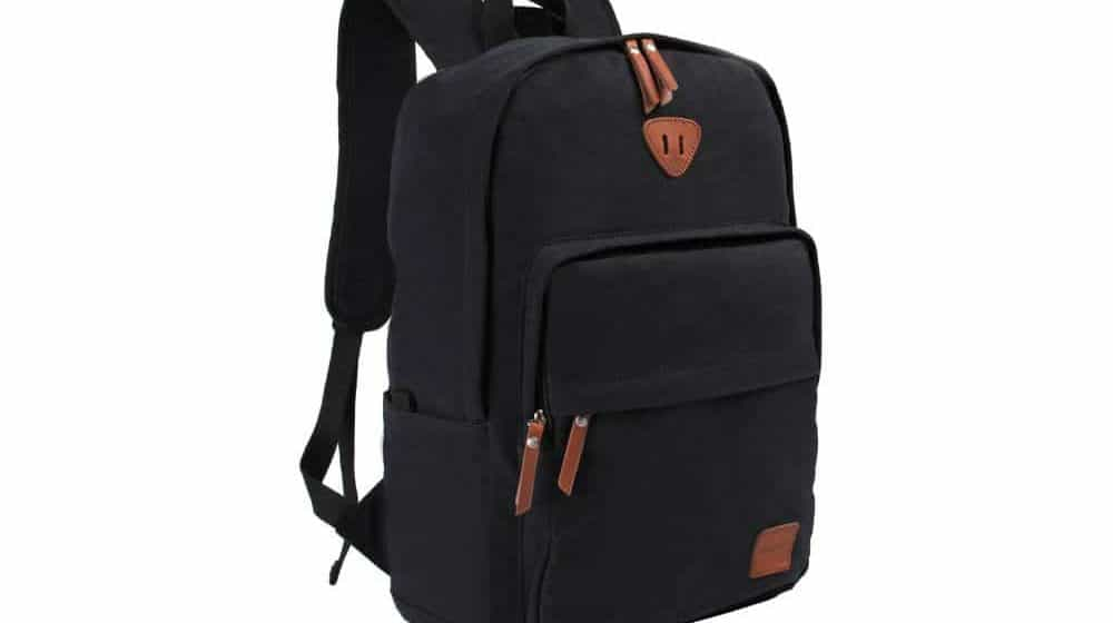 Ibagbar Vintage Canvas Backpack Rucksack Laptop Bag Computer Bag Review